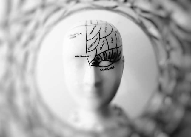 NeuroPersuasion™ and New Podcast Content!